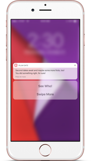 Rich push notification - Plum Date